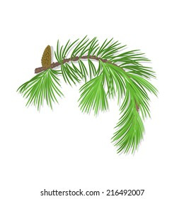 Branch of Christmas tree with pine cone there is also a format eps