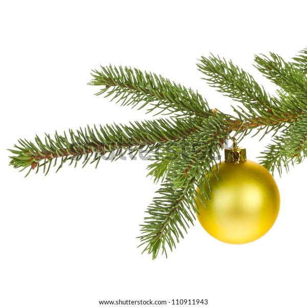 branch of Christmas tree with yellow glass ball  isolated on white background  concept of new year