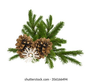 branch of fir-tree and cone isolated on a white background