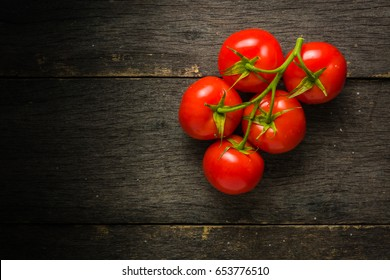 Branch with five ripe red tomatoes. Drops of water on ripe fruits. Green leaves and trunk. Copy space.
