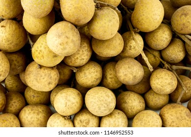 Branch Longan (Dimocarpus longan) isolated on white background. Famous fruit Central of Thailand