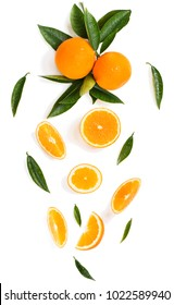 Branch of orange tree with fruits and falling sliced of oranges with green leaves isolated on white background.