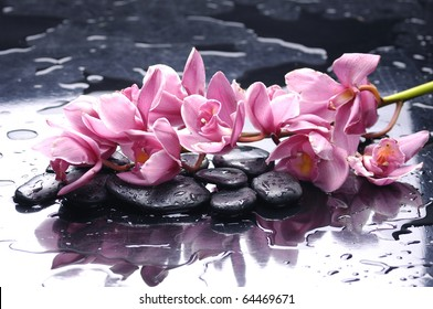 Branch pink orchid and black stones with reflection