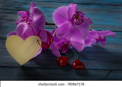 Branch purple Orchid on a wooden blue background