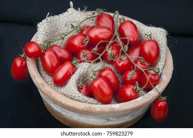 A branch  of red  plum tomatoes on  a black background
