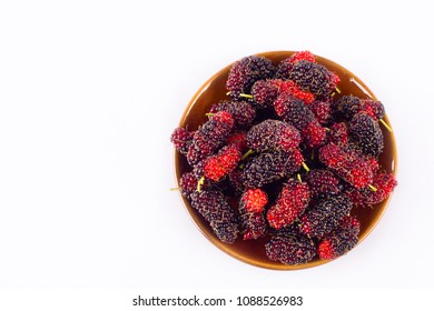 branch of ripe mulberry fruit  in brown bowl on white background healthy mulberry fruit food isolated