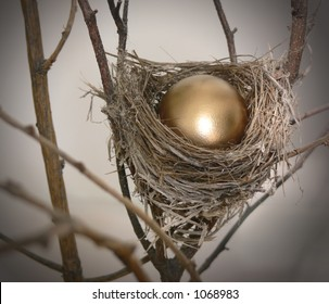 Branch with small nest, containing a bright golden egg.