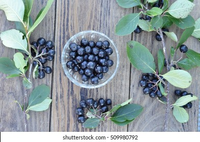 Branches and berries of black chokeberry on the background of the wooden planks.