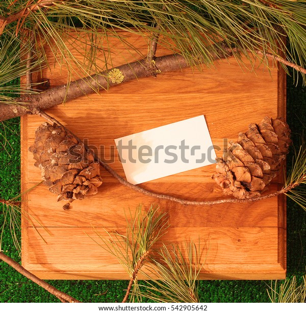 Branches of cedar and pine cone on a stand made of oak. Template business card on a wooden stand. Design element. Selling products made from cedar wood. Background for design