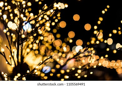 Branches decorated with Christmas lights and bokeh in the backgr