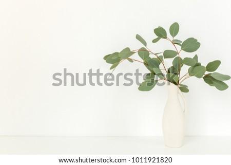 Branches Eucalyptus Vase On Table On Stock Photo Edit Now
