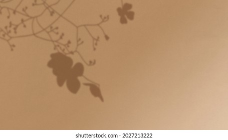Branches Shadow Overlay Effect Autumn Background - Shutterstock ID 2027213222
