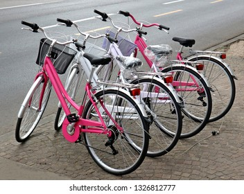 Brand new women bicycles of pink and white colors lined up on a sidewalk, at roadside.