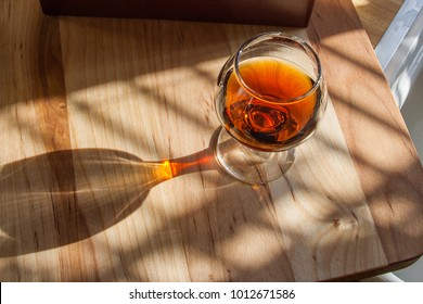 brandy in the sunlight