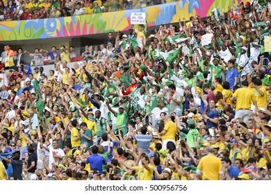 Brasilia, Brazil - June 30, 2014: Fan on the World Cup 2014 Round of 16 game between France and Nigeria at Estadio Nacional Mane Garrincha in Brazil.