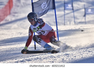 BRASOV, ROMANIA - FEB 5, 2017: A competitor in the downhill skiing in the parallel slalom alpine event, Husqvarna Ski Cup. February, 2017, Brasov, Romania