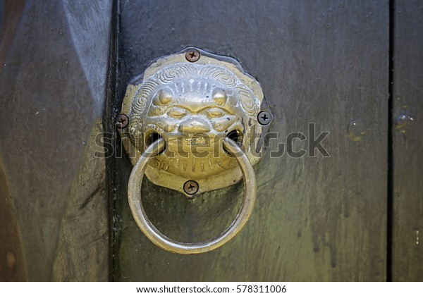 Brass Lion Head Door Knocker Stock Photo Edit Now 578311006