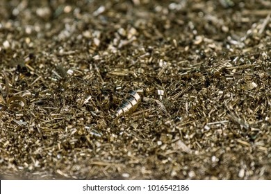 brass scrap from the manufacturing process. Brass is a metallic alloy that is made of copper and zinc