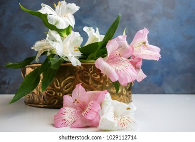 A brass tin with pink and white Alstroemeria, also alled Peruvian Lilies or Lily of the Incas agasint an abstract blue background.