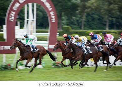 Horse Racing Trophy Images Stock Photos Vectors