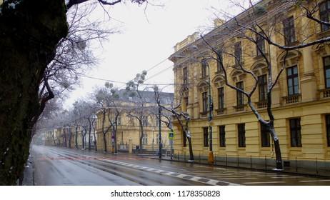 Bratislava Street in Winter (after snow)