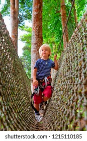 Brave little child in safety harness climb on tree tops route, pass hanging net bridge obstacle in adventure rope park. Outdoor activity,  family lifestyle in summer scout camp on vacation with kid