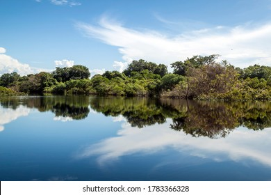Brazil, Amazonas, Novo Airão, Jaú National Park, Rio Negro. The reflective water of the Rio Negro tributary of the Amazon River in Brazil. Beautiful reflection of the sky and forest in the waters.