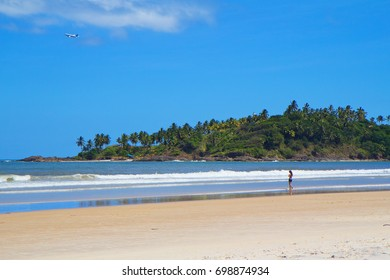 Brazil. Ilheus. Beach. Cristo beach is one of the many beaches in Ilheus. Here you can see the exotic coconut palm trees and vegetation typical of the Atlantic forest.