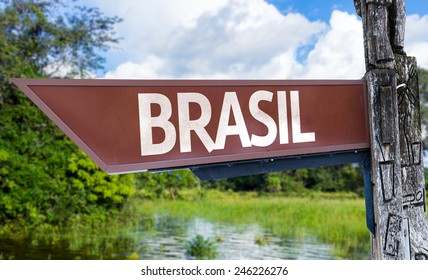 Brazil (in Portuguese) wooden sign with a forest background