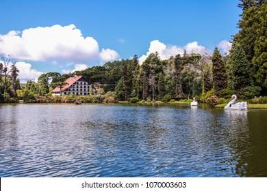 Brazil, Rio Grande do Sul, Gramado Canela, Lago Negro Park and Nature Lake Swan Pedal Boat Pedalinho