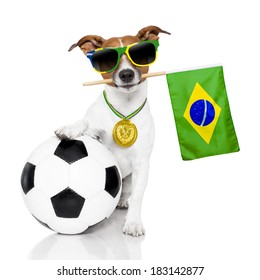 brazil soccer dog  with ball  and medal