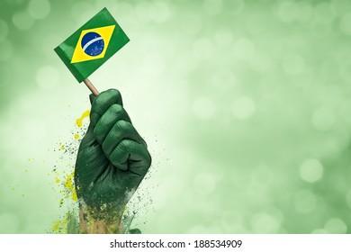 Brazilian fan patriot