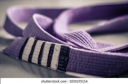 Brazilian Jiu Jitsu purple belt