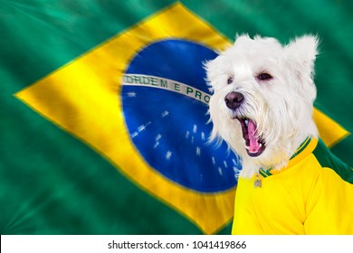 Brazilian west highland white terrier screaming with blurred zoom movement flag
