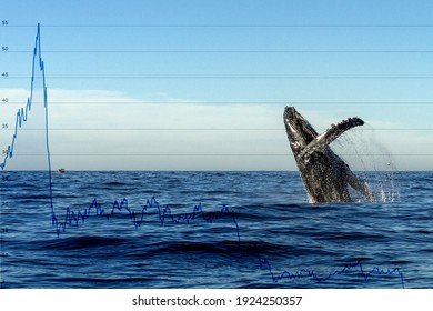 Breaching whale with stock market money cripto value bitcoin diagram flow chart