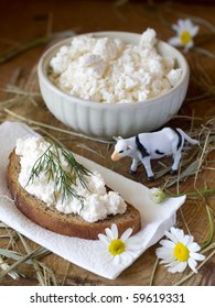 Bread with cottage cheese  and toy cow and bowl of fresh cottage cheese in background