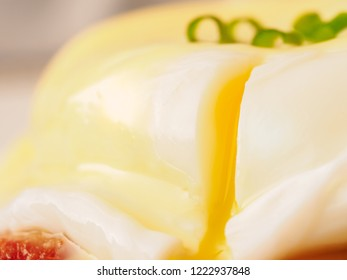 Breakfast is Eggs Benedict - toasted English muffins, bacon, ham, poached eggs, herbs and delicious buttery hollandaise sauce. Close-up of drop of liquid egg yolk.