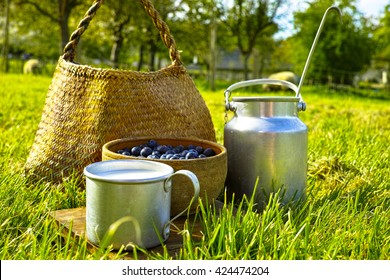 Breakfast on farm -  fresh organic cowmilk and blueberry on the green grass