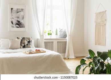 Breakfast tray with pastries and coffee on a cozy, white bed in a bright and peaceful bedroom interior with plants on a window sill seat