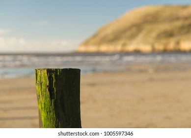 Brean beach moss covered weathered post in the foreground with Brean Down out of focus in the background. Bristol channel. Peaceful coastal concept