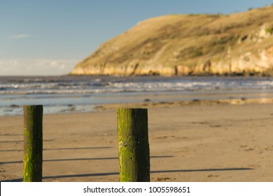 Brean beach moss covered weathered posts in the foreground with Brean Down out of focus in the background. Bristol channel. Peaceful coastal concept