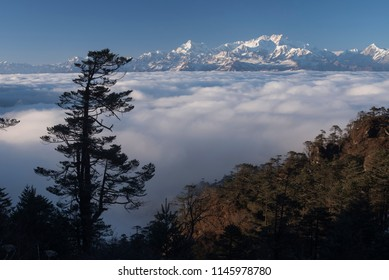 A breathtaking landscape with a spectacular view of the snowcaped Kanchenjunga Range and the floating river of clouds as seen from Sandakphu, Darjeeling, West Bengal, India, Asia