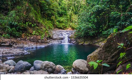 Breathtaking natural environment where water stream flows true lush jungle vegetation making a small waterfall and natural pool. Wild tropical landscape wallpaper scenery.