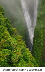Breathtaking Papalaua Falls on the north shore of the Hawaiian island of Molokai provide a lush and jurassic backdrop to one of the worlds most beautiful and natural destinations.