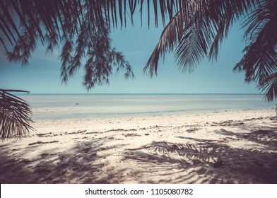 Breathtaking scenery the sand shore of the calm ocean and the beach surrounded by the tropical plants in the exotic island. Kingdom of Thailand. Perfect background for the illustrations and collages.