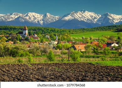 Breathtaking spring countryside landscape, church of Hosman and high snowy Fagaras mountains in background, Sibiu region, Transylvania, Romania, Europe