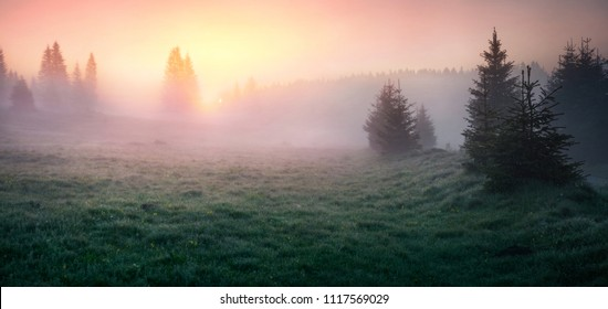 Breathtaking summer sunrise in Durmitor Nacionalni Park. Splendid foggy view of Montenegro countryside, Zabljak town location. Beautiful world of Mediterranean countries. Traveling concept background.