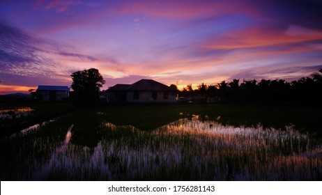 Breathtaking sunrise at Paddy Field near, Klebang, Malacca, Malaysia.  long Exposure Unedited image witl low iso and onsite filter.