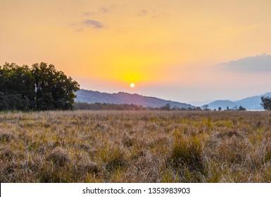 Breathtaking sunset in Jim Corbett National Park, India