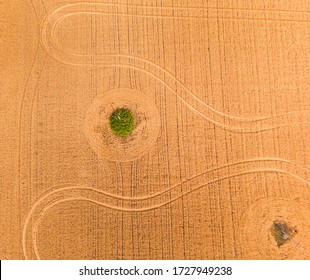 Breathtaking top view of agricultural area and cultivated fields in sunny day. Drone photography. Concept of agrarian industry. Discover the beauty of world.